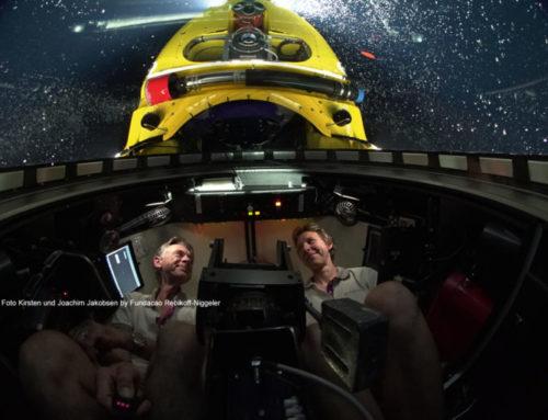 Mit Klebstoffen die Unterwasserwelt erforschen